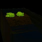 Biohort Zwischenboden für Hochbeet Größe 2x1dunkelgrau metallic